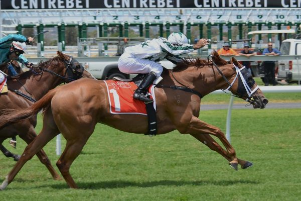 Data Exchange for Sage 200 Used by Perth Racecourse to connect ERP to Company Website Eureka Addons